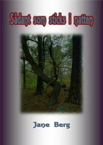 Sådant som sticks i natten (e-bok) av Jane Berg