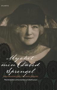 Mycket min David Sprengel (e-bok) av Lisbeth La