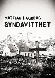 Syndavittnet (e-bok) av Mattias Hagberg