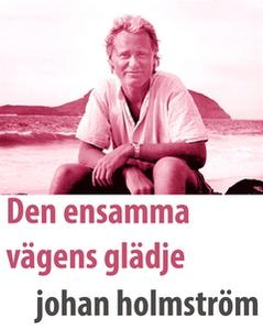 Den ensamma vägens glädje (e-bok) av  holmström