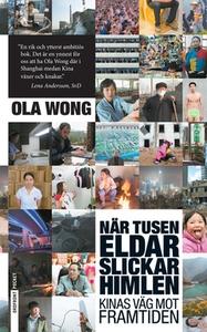 När tusen eldar slickar himlen (e-bok) av Ola W