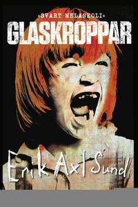 Glaskroppar (e-bok) av Erik Axl Sund