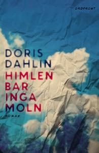 Himlen bar inga moln (e-bok) av Doris Dahlin