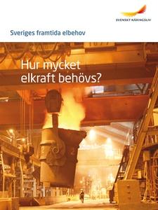 Sveriges framtida elbehov (e-bok) av  Svenskt N