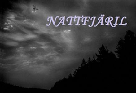 Nattfjäril (e-bok) av Christoffer Andersson