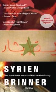 Syrien brinner (e-bok) av Aron Lund