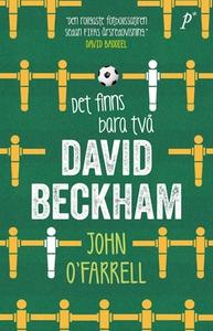Det finns bara två David Beckham (e-bok) av Joh