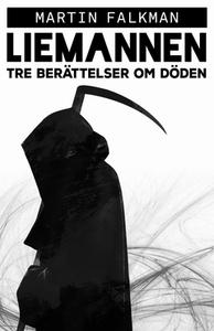 Liemannen (e-bok) av Martin Falkman
