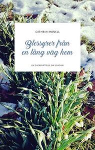 Blessyrer från en lång väg hem (e-bok) av Cathr