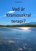 Vad är Kraniosakral terapi?