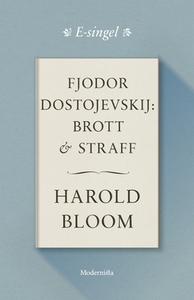 Fjodor Dostojevskij: Brott och straff (e-bok) a