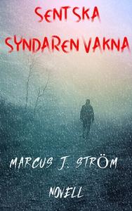 Sent Ska Syndaren Vakna (e-bok) av Marcus J. St