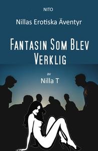 Fantasin Som Blev Verklig - Erotik (e-bok) av N