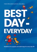 Best Day - Everyday