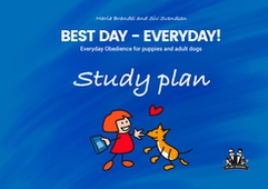 Best Day - Everyday Study plan