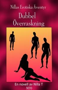 Dubbel överraskning - Erotik (e-bok) av Nilla T
