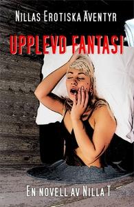 Upplevd Fantasi - Erotik (e-bok) av Nilla T