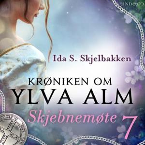 Skjebnemøte (lydbok) av Ida S. Skjelbakken