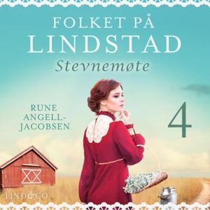 Stevnemøte (lydbok) av Rune Angell-Jacobsen