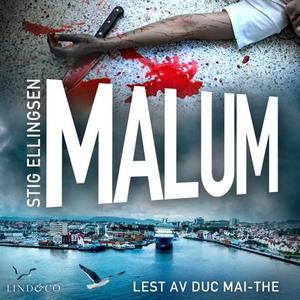 Malum (lydbok) av Stig Ellingsen