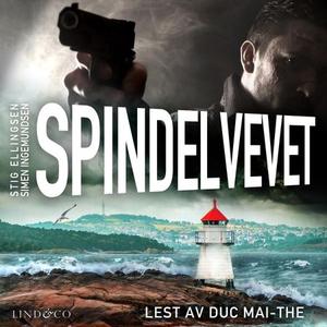 Spindelvevet (lydbok) av Stig Ellingsen, Sime