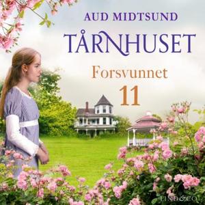 Forsvunnet (lydbok) av Aud Midtsund