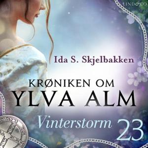 Vinterstorm (lydbok) av Ida S. Skjelbakken
