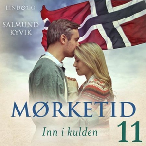 Inn i kulden (lydbok) av Salmund Kyvik