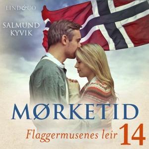 Flaggermusenes leir (lydbok) av Salmund Kyvik