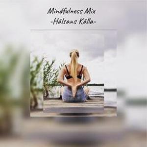 Mindfulness Mix (e-bok) av Heidi Hallifax