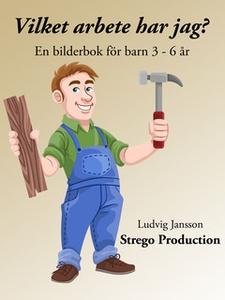 Vilket jobb har jag? (e-bok) av Ludvig Jansson