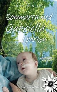 Sommaren med Gabriella i parken (e-bok) av Arne