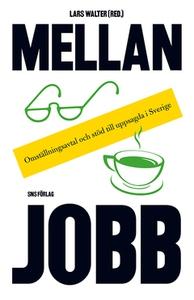 Mellan jobb (e-bok) av Lars Walter