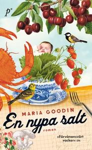 En nypa salt (e-bok) av  Maria Goodin, Maria Go