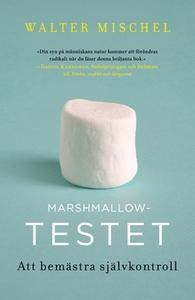 Marshmallowtestet (e-bok) av Walter Mischel