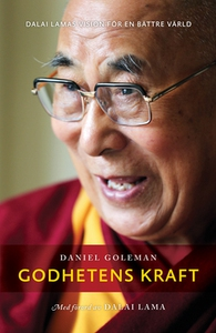 Godhetens kraft (e-bok) av Daniel Goleman, Dala