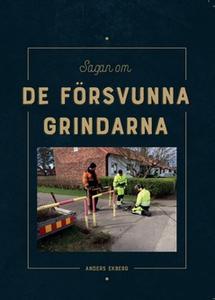 Sagan om de försvunna grindarna (e-bok) av Ande