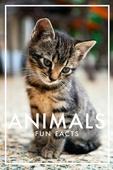 Animals Fun Facts (Epub3)