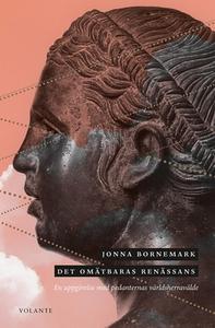 Det omätbaras renässans (e-bok) av Jonna Bornem