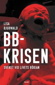 BB-krisen (e-bok) av Lisa Bjurwald
