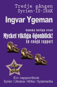 Mycket viktiga ögonblick (e-bok) av Ingvar Ygem