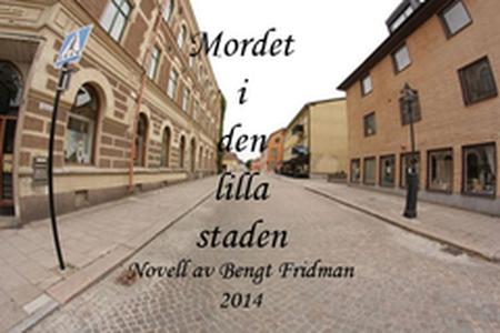 Mordet i den lilla staden (e-bok) av  Fridman B