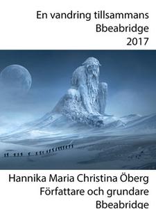 Robin Hood skapar broar (e-bok) av Hannika Mari