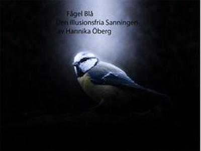 Fågel Blå (e-bok) av Hannika Maria Christina Öb