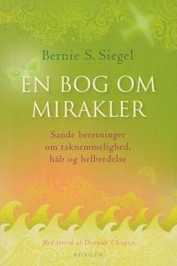 En bog om mirakler (e-bog) af Bernie