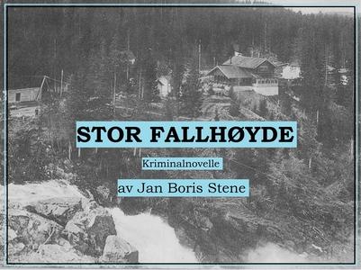 Stor fallhøyde (lydbok) av Jan Boris Stene