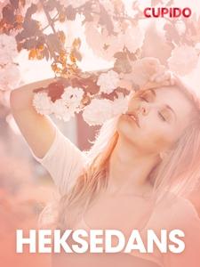 Heksedans – erotiske noveller (ebok) av Cupid
