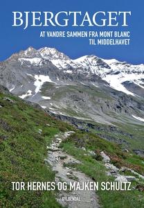 Bjergtaget (lydbog) af Majken Schultz