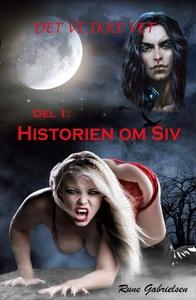 Historien om Siv (ebok) av Rune Gabrielsen