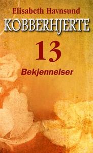Bekjennelser (ebok) av Elisabeth Havnsund
